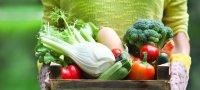 Как сделать ящик для хранения овощей своими руками