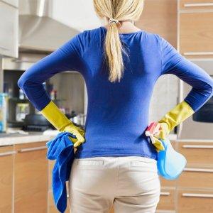 Откуда берутся мушки дрозофилы в квартире, доме? Как избавиться от мушек дрозофил в квартире, на кухне, в цветах: советы. Как сделать ловушки для мух дрозофил своими руками: инструкция