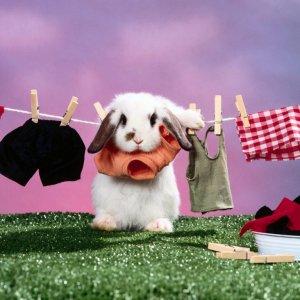 Как можно быстро высушить одежду изучаем лучшие методы